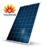 TALESUN TP660P-260W поликристаллическая солнечная панель (батарея, фотоэлектрический модуль) 260 Вт
