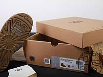 Женские мини-сапоги UGG Mini Bailey Button II Chestnut 1016422, фото 3