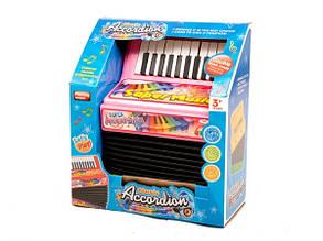 Детский музыкальный Аккордеон