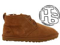 Мужские ботинки UGG Neumel Suede Boots Chestnut 3236