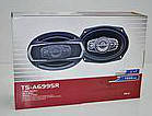 Автомобильная акустика, овальные колонки TS-A6995R