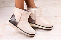 Женские ботинки угги UGG