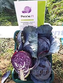Семена капусты Рескью F1, 2500 семян
