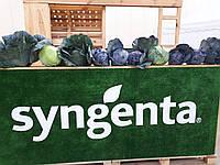 Семена капусты Зенон F1, 2500 семян