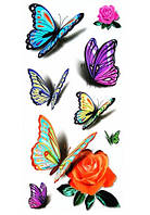 Переводное тату бабочки и розы