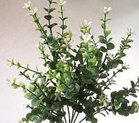 Травка с белыми цветочками, фото 1