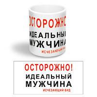 """Керамическая чашка с приколом """"Идеальный мужчина"""""""