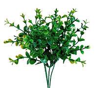 Букет эвкалипта с мелким листочком, фото 1