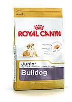 Royal Canin BULLDOG JUNIOR сухой корм для взрослых собак породы английский бульдог от 12месяцев 12кг