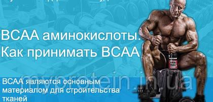 Питание для спортсменов. Аминокислоты BCAA