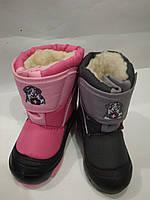 Зимние сапоги Демар-Demar DOGGY Липучка, фото 1