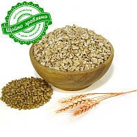 Пшеничные хлопья, 1 кг, фото 1