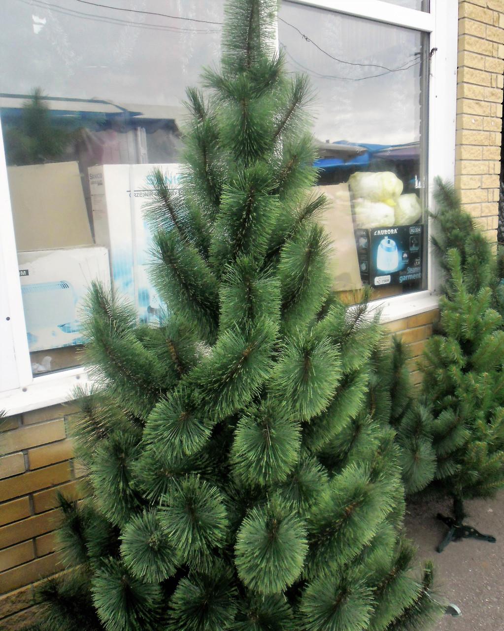 Новогодняя искусственная сосна распушенная  2,3 метра