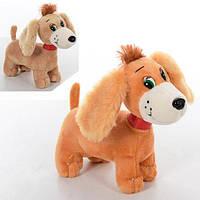 Мягкая игрушка MP 1367 (48шт) собачка, размер средний, звук, 2цвета, на бат-ке, 20см