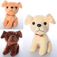 Мягкая игрушка MP 1388 (48шт) собачка, размер средний, колокольчик,звук,3цвета,на бат-ке,20см