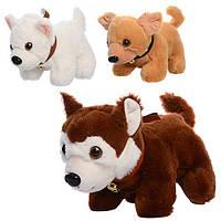 Мягкая игрушка MP 1376 (48шт) собачка, размер средний+, звук, колокольчик,3цвета,на бат-ке,25см