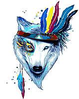 """Картины раскраски по номерам """"Белая волчица"""" набор для творчества"""