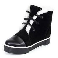 Женские зимние замшевые ботинки черного цвета  с шнурками и молнией с подкладкой из шерсти на подошве ТЭП, фото 1