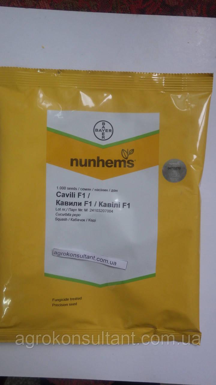 Семена кабачка Кавили F1 (Nunhems) 1000 семян — партенокарпик, ранний гибрид, светлый