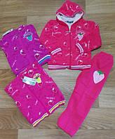 Трикотажный костюм - двойка утепленный для девочек Crossfire оптом, 2-6 лет.