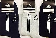 """Носки мужские зимние махровые """"Adidas"""" 40-44 размер, Ассорти"""