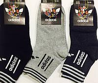 """Носки детские демисезонные спортивные """"Adidas"""" размер 18-20, ассорти"""