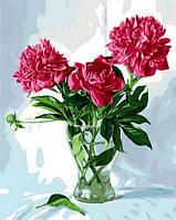 """Картины раскраски по номерам """"Пионы в стеклянной вазе"""" набор для творчества"""