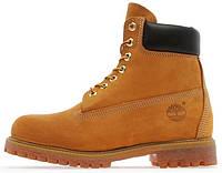 Мужские зимние ботинки Timberland Classic 6 inch Yellow (Тимберленд) С МЕХОМ