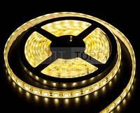 Светодиодная лента Biom Светодиодная лента B-LED 3528-60 WW IP65 теплый белый, герметичная, 1м, м