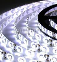 Светодиодная лента Biom Светодиодная лента B-LED 5050-60 W IP65 белый, герметичная, 1м, м