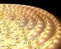 Светодиодная лента Biom Светодиодная лента B-LED 5050-60 WW IP65 теплый белый, герметичная, 1м, м