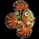 Рыба «Клоун», фото 2
