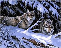 """Картины раскраски по номерам """"Волки в лесу"""" набор для творчества"""