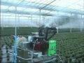 Генератор холодного тумана Igeba u15e Германия