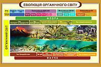 """Стенд """"Еволюція органічного світу"""" в кабінет БІОЛОГІЇ"""