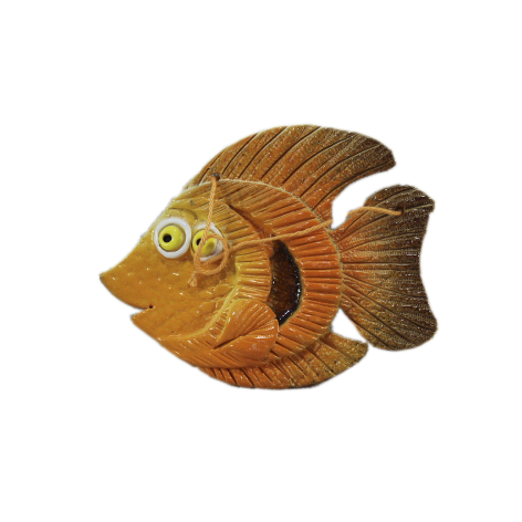 Рыба «Альбус»
