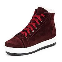 Женские зимние замшевые бордовые ботинки кроссовки с шнурками на термопластичной подошве, фото 1
