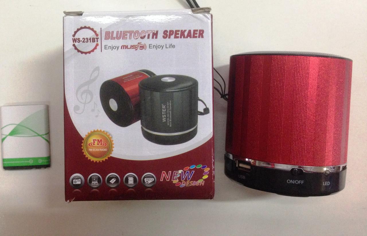 Компактная портативная колонка Bluetooth WSTER WS-231BT, музыкальная колонка радиоприемник, колонка wster