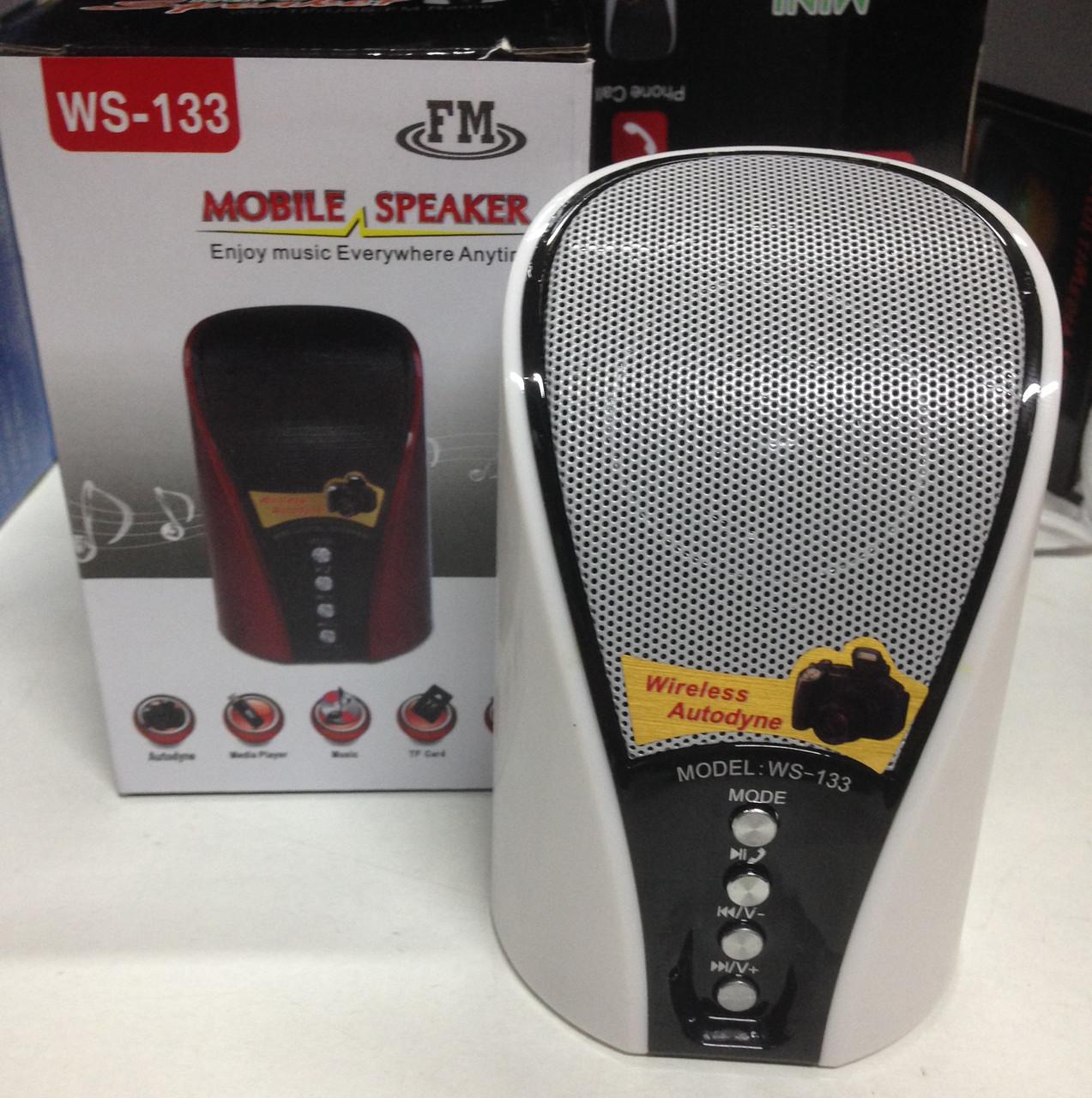 Беспроводная портативная Bluetooth колонка WSTER WS-133 с USB, FM, MicroSD и AUX