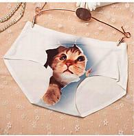 Женские Трусики с 3Д Принтом 3D Киска Кошечка Кошка Кот Слипы CAT S/M