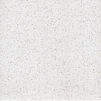 Искусственный кварцевый камень White 0011