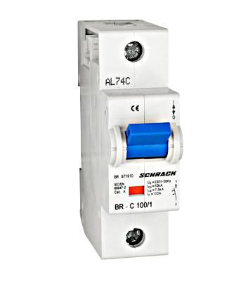 Автоматический выключатель повышенного тока BR 10кА 1P 100А х-ка C Schrack
