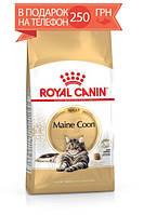 Корм Royal Canin Maine Coon Adult, для мейн-кун старше 15 месяцев, 10 кг + ПОДАРОК 250 грн на мобильный