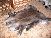 Шкура северного оленя темной раскраски, фото 1