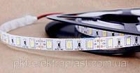 Светодиодная лента SMD5630 (5730) 60LED без влагозащиты