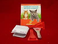 Лучший друг Эктостоп для кошек и котят - 1 пипетка