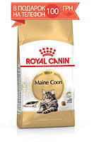 Корм Royal Canin Maine Coon Adult, для мейн-кун старше 15 месяцев, 4 кг + ПОДАРОК 100 грн на мобильный