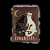 """Тарелка прямоугольная """"Коты день-ночь"""""""