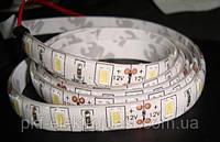 Светодиодная лента SMD 5630 (5730)/ 60 LED с влагозащитой