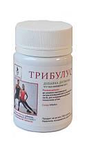 БАД Трибулус для профилактики половых расстройств, 60 табл Тибетская формула